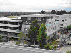 DoncHill  The Berkeley